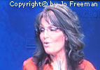 Sarah Palin on TV